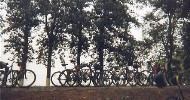 49 Bikes and trees - plain W of Beijing